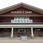 Image for the Tweet beginning: U.S. dairy farmers dump milk