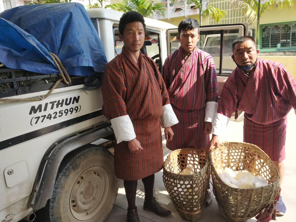 Villagers offer free local produce for quarantine centres  22 households in Bamengang village of Dophuchen, Samtse contributed 15.5kg butter, 130 balls of cheese, and 1,005 bundles of nakey (fern) to the Covid-19 cause in Phuentsholing today.