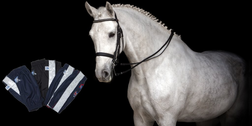 Did You Know That Dressage Riders Worldwide Love Our Gaiters Too? Perfect For The Warm-Up & General Use For Keeping Bandages Dry & Clean. http://bit.ly/2VN0wpN  #dressagehorse #dressagegear #horsespic.twitter.com/iJZ9JxXoad