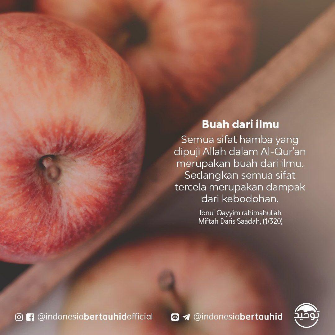 Replying to @indonesiatauhid: Buah dari Ilmu