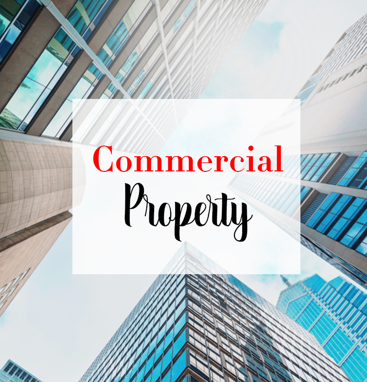 Are you a business or organization is search of commercial property for sale or lease?  We can help. https://theadolphgroup.com/commercial-property/… #BuyAdolph #ComercialProperty #MakingRealEstateYOURreality #RealEstateStyle #CypressRealtor #TexasRealtor #RealEstateAgents #RealEstateCreatesWealthpic.twitter.com/z0ZjbNULXJ