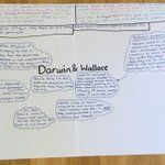 Image for the Tweet beginning: Year 6 have been developing
