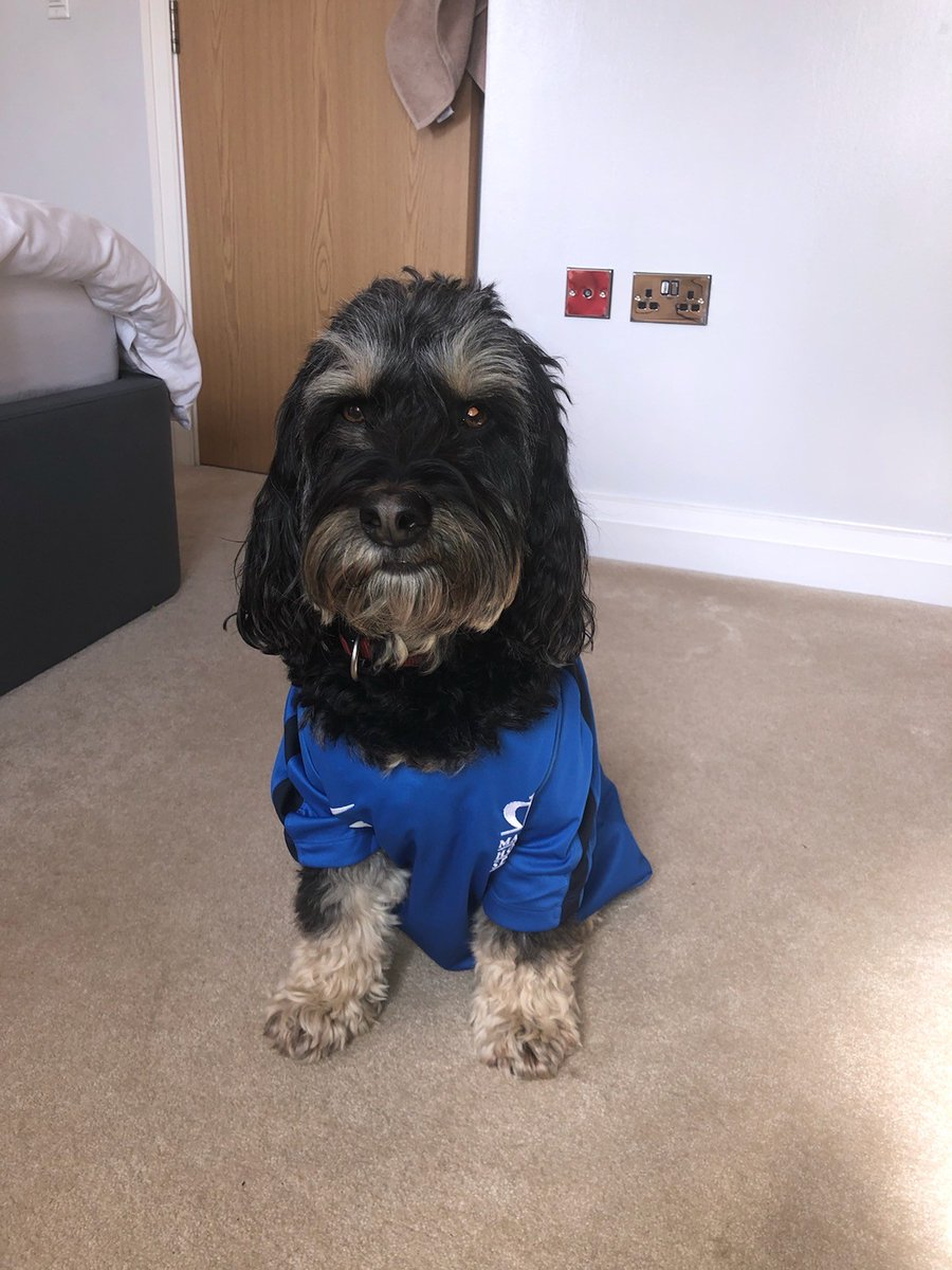 Recognise this handsome chap with @ManorHseHead? Help keep the school brand social this weekend. Send a pic of your pet wearing, sitting beside or inside our uniform. Post it tagged #MyMHSPet on Insta and prepare to be shared! #CreativeandCollaborative #SurreyGirlsSchool