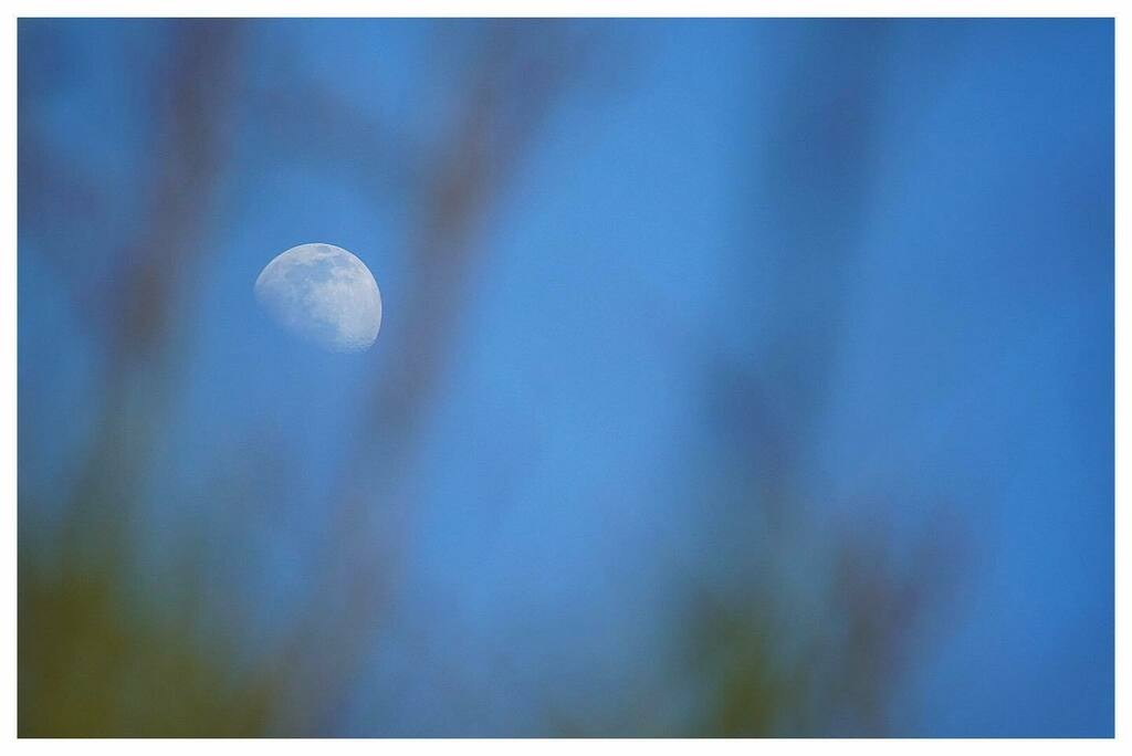 Mate, you're a keen one aren't you?  #daymoon #moon #instalove #instawales #igerswales #uk_greatshots #instadaily #Picottheday #uk_shooters #picoftheday #igers #instalike #imagesofwales #iphonesia #Photography #sonyalpha #sony #sonya #sonyimages #a6500 #…