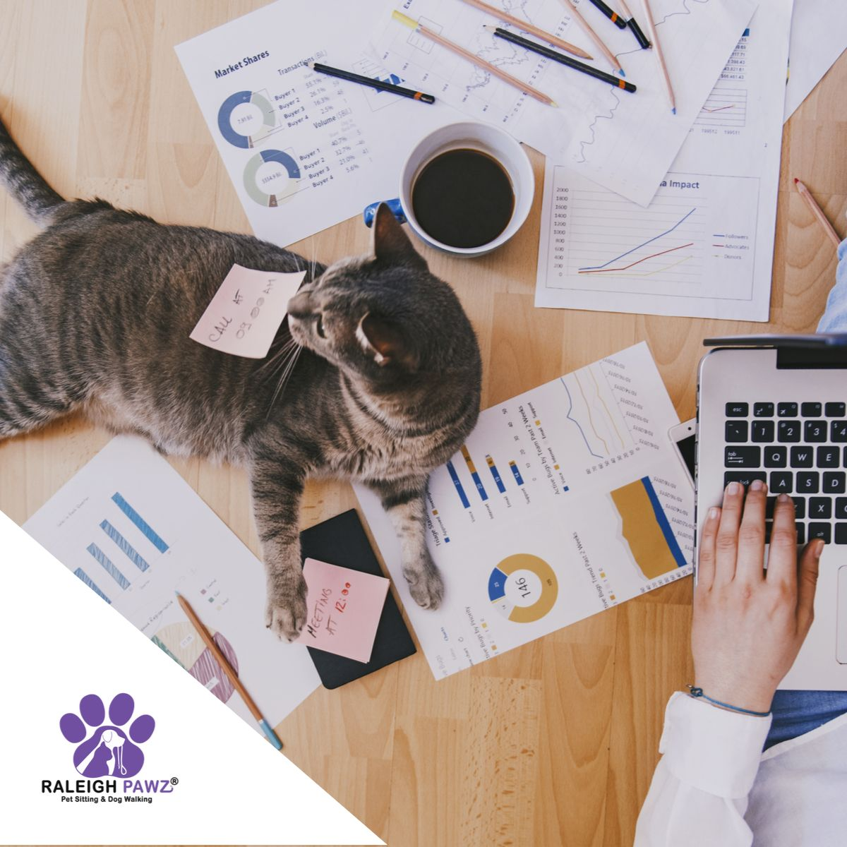 Have you been working from home lately?  How is your fur baby reacting?  #workingfromhome #petlife pic.twitter.com/c1FdiJAw3I