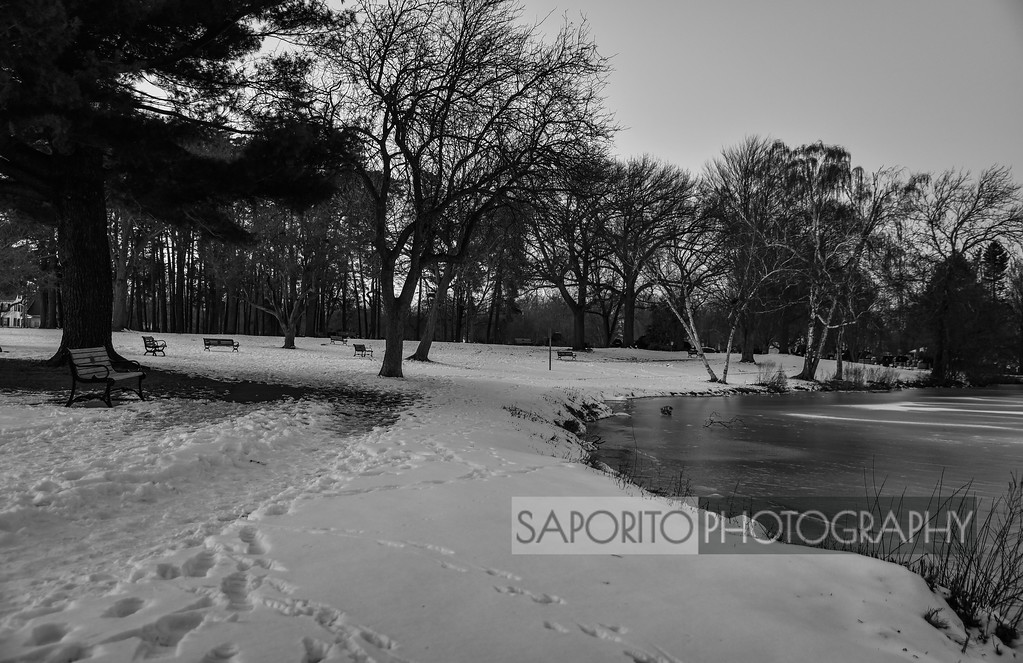 Oceans, Waterfalls and Water#lakequanapowitt #wakefield #winter #blackandwhitephotographyhttps://zcu.io/JlPc