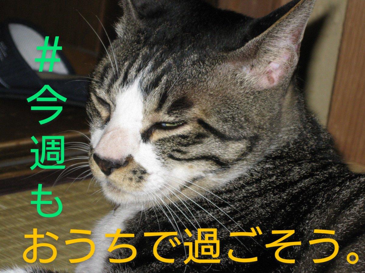 信輔 病院 笠井