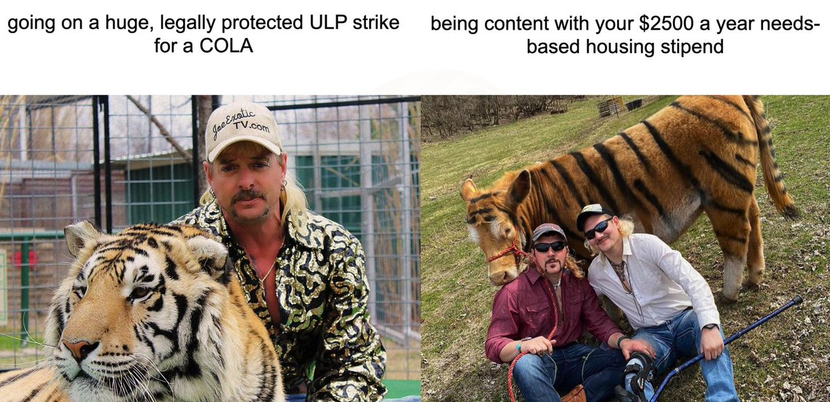 Tony Boardman On Twitter Ok All You Cool Cats And Kittens You Asked For It Tiger King Cola Meme Thread 1 8 Ulpstrike4cola Colameme Tigerking Cola4all Payusmoreucsc Britneyspears Https T Co Gvtmfnd1tp