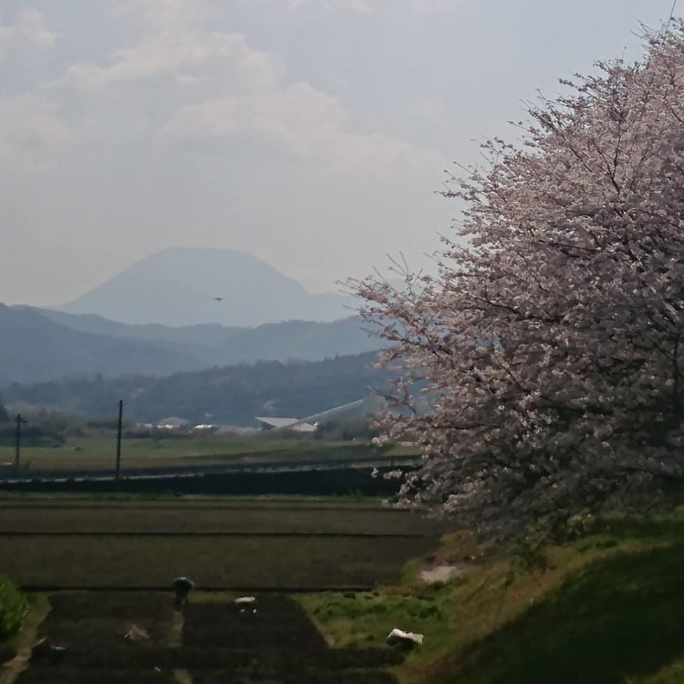 ToshinobuM photo