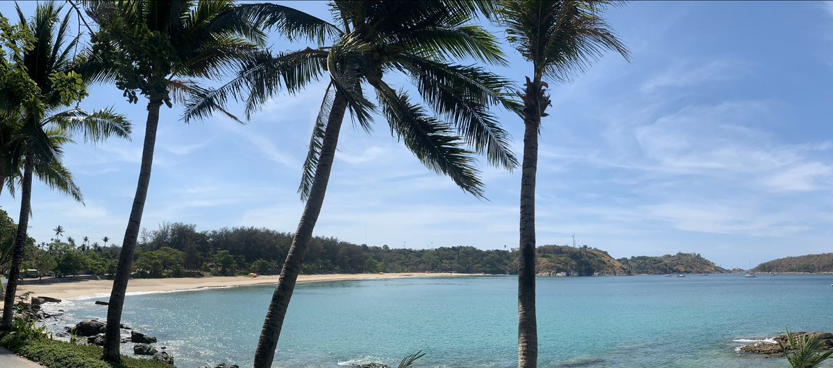 หาดในหาน พึ่งปิดได้ไม่กี่วัน ธรรมชาติฟื้นตัวเร็วมาก สวย ผมปลื้มมาก #ภูเก็ต #ธรรมชาติ #หาดในหาน #โควิด19 #COVID2019 #phuket #nature #Beach #beautiful #stunning #naiharn