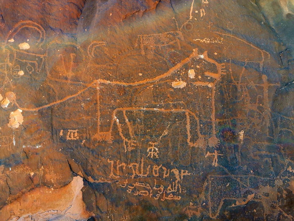 Inscriptions and rock arts, NW Saudi Arabia #MiddleEast pic.twitter.com/PWbc99yS6o