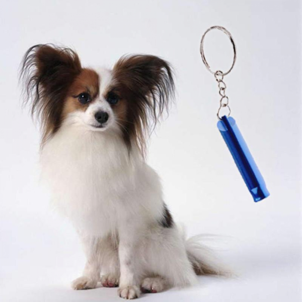 #animal #cute Dogs Whistle Keychain for Training