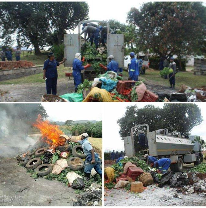 Burning fresh produce zimbabwe