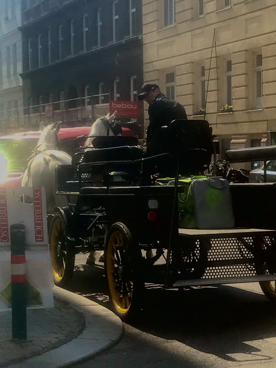 Meanwhile in #austria: Fiaker liefern aus. Only in #Vienna. #wienliebepic.twitter.com/3kbxqBBjbb