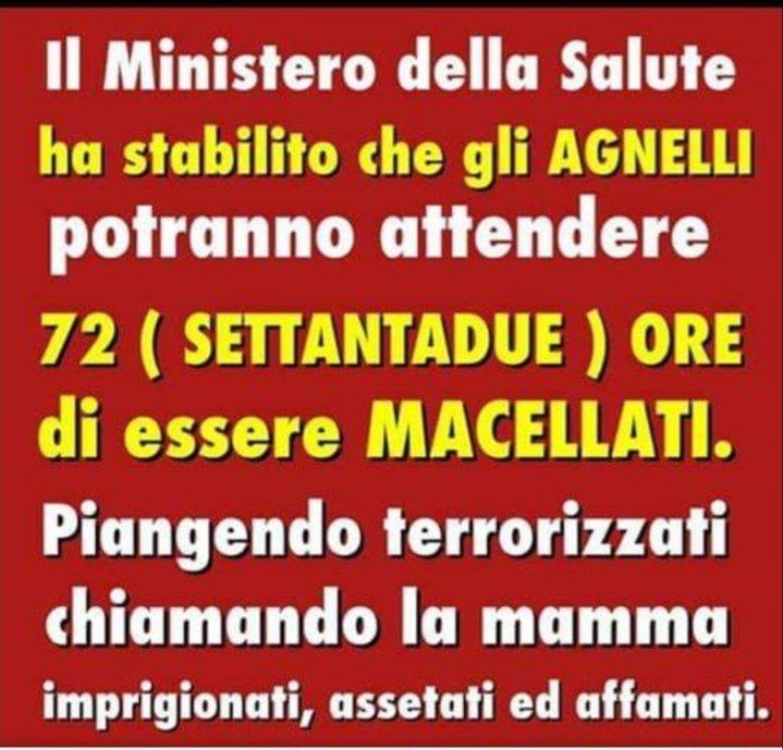#Borrelli