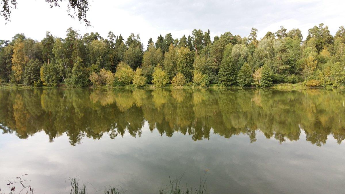 разные балашиха алексеевский пруд фото сегодняшнее время, рваные