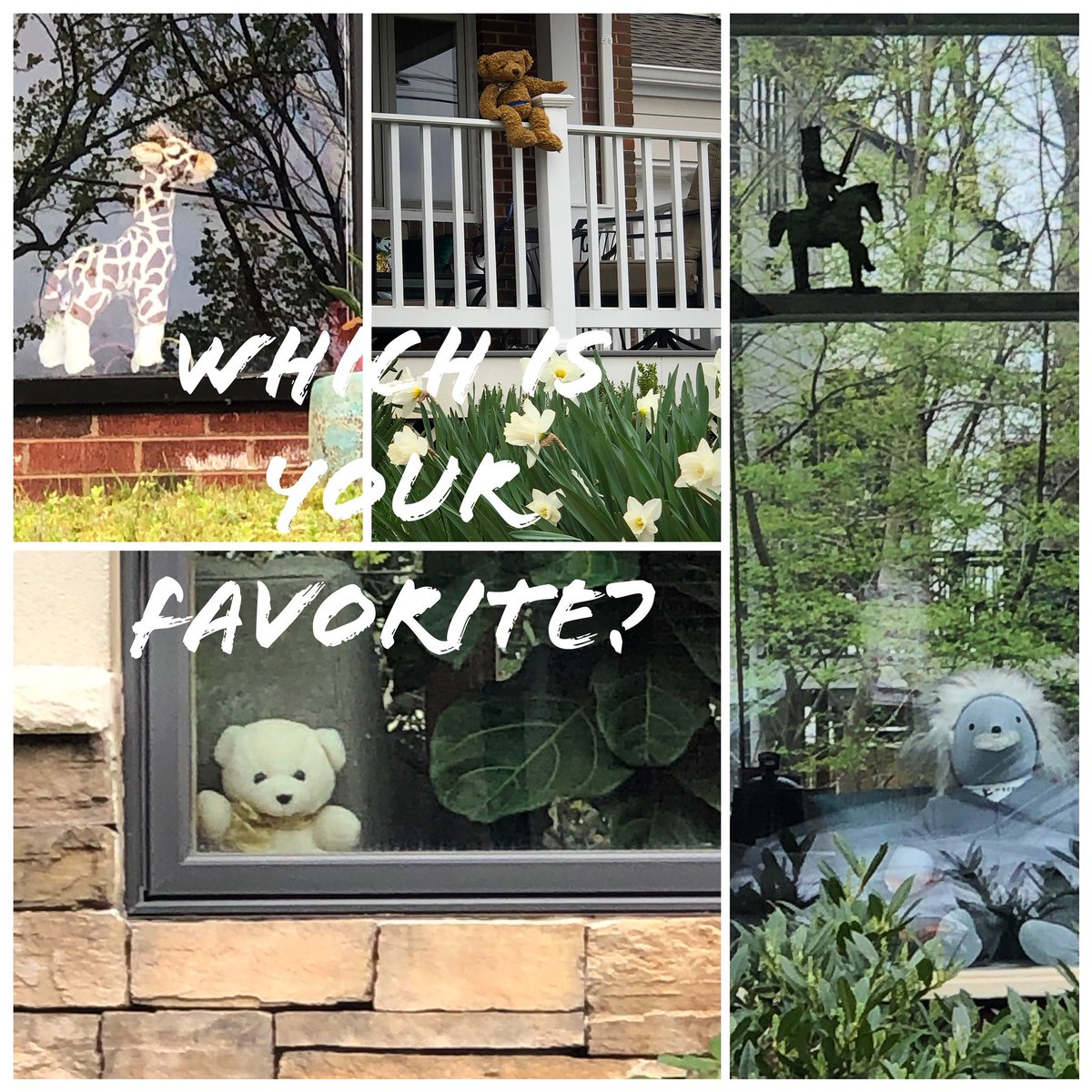 Which one is your favorite?!  comment below!! These were seen during morning walk throughout the neighborhood in windows! Love it.  • • • #jenniferjhammond #selfisolation #quarantine #socialdistancing #walk #morning #neighborhood #earlymorning #stuffedanimals #windowspic.twitter.com/dEEyAyqUoo