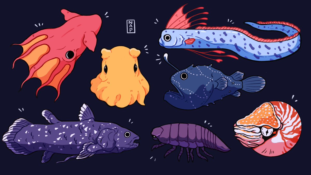 Mysterious creatures 🌊✨