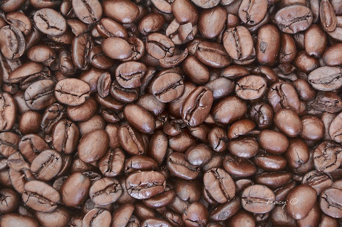 Treat yourself to good Coffee - Since you cant go anywhere due to #COVID19  find a #coffee  that makes you feel like youre dining out. #coffeeBeans  #coffeeRoasters  #CoffeeRoasterList  #coffeeList    https://coffeebeaned.com/coffee-roaster-list/  … @HeyTammyBruce