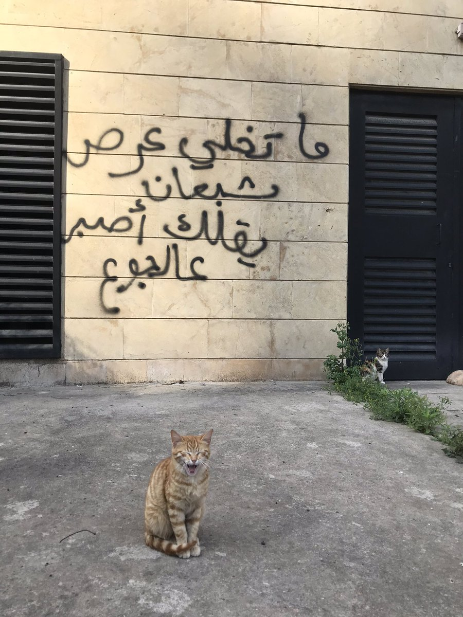 "Graffiti: Don't let a replete pimp say to you, ""Be patient in hunger."" #Beirut, 2020 #Lebanon #لبنان #بيروت"
