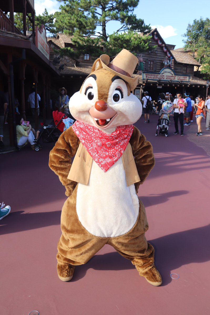 #Chip and #Dale look ready to face the #DisneyWildWest! #Westernland #ChipnDale #ChipandDale #TDL #TokyoDisneyland #TDR #TokyoDisneyResort #チップ #デール #チップとデールpic.twitter.com/ejgC229dBt