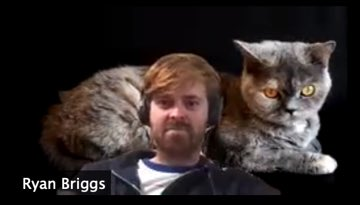 Ryan got a cat everyone @rw_briggs