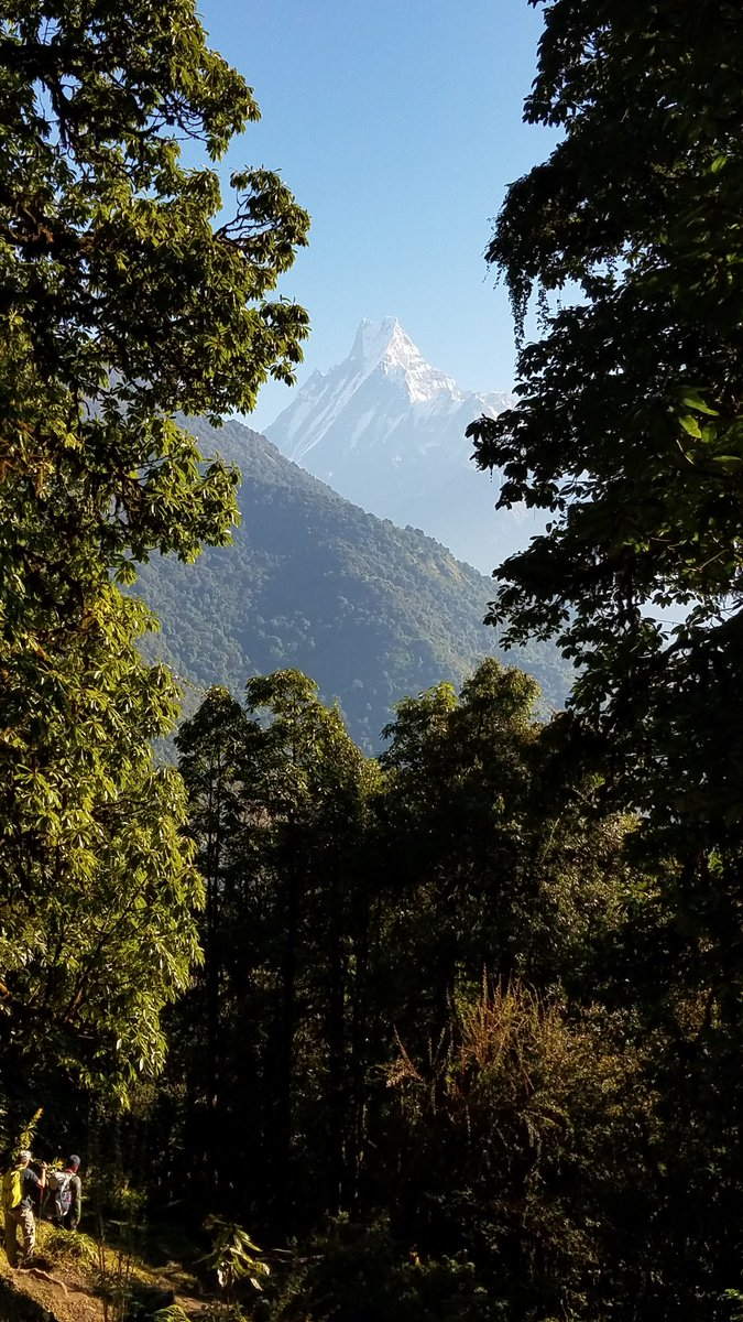 The almighty Mount Machapuchchhre. One of its kind, beautiful, towering and stunning mountain in the Annapurna Himalaya of Nepal. #Fishtail #Himalaya #Nepal #Mountain #Nature #AnnapurnaFoothills #LifetimeExperiences