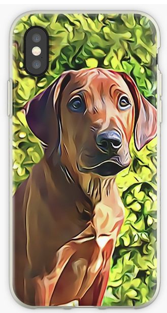 #RhodesianRidgeback #Puppy - Choose your #Apple #iPhone Model and buy a Unique piece of #Art for your iPhone while also providing Scratch Resistance with iPhone Protective Cases, Covers and #Skins http://bit.ly/RidgebackPhonepic.twitter.com/cTMVeaMHxJ