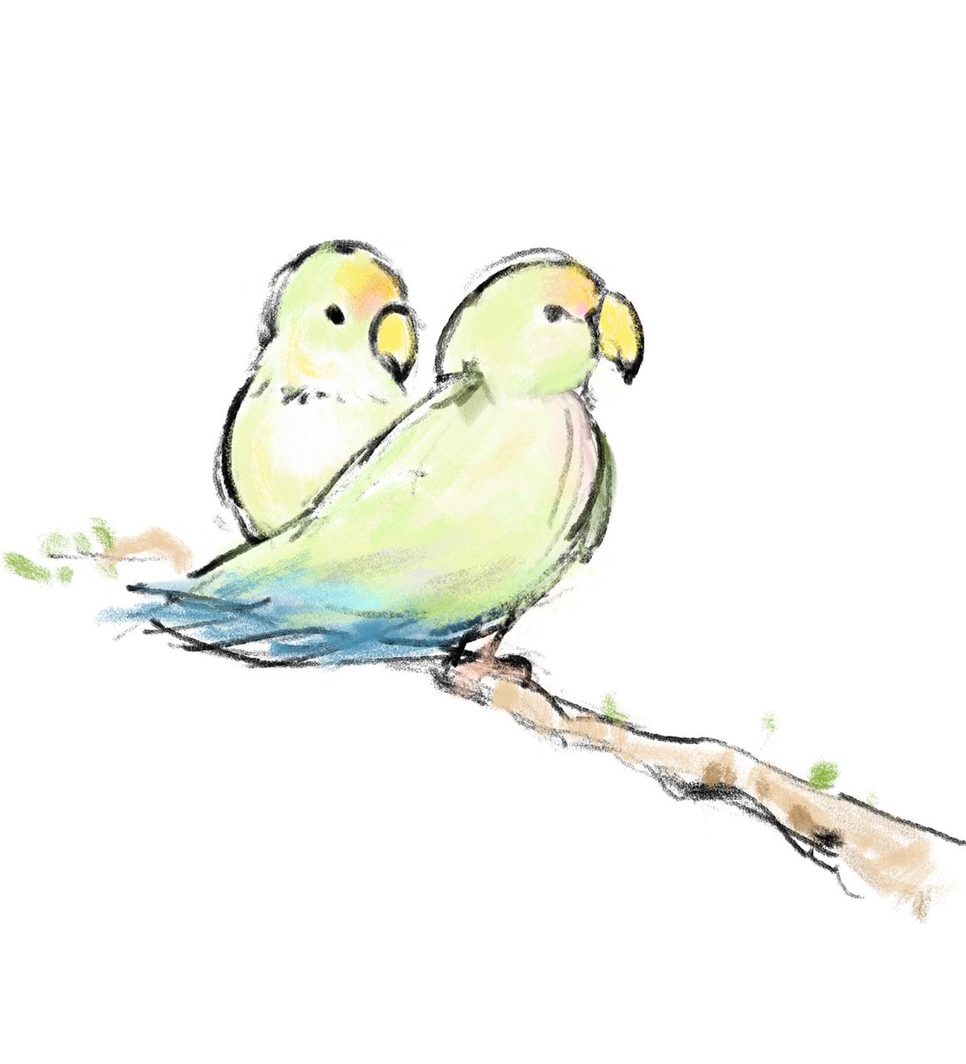 Kerry Edward On Twitter Daughter S Lovebirds Minus The Cage Adobefresco Illustration Handdrawn Sketch Lovebirds Couple
