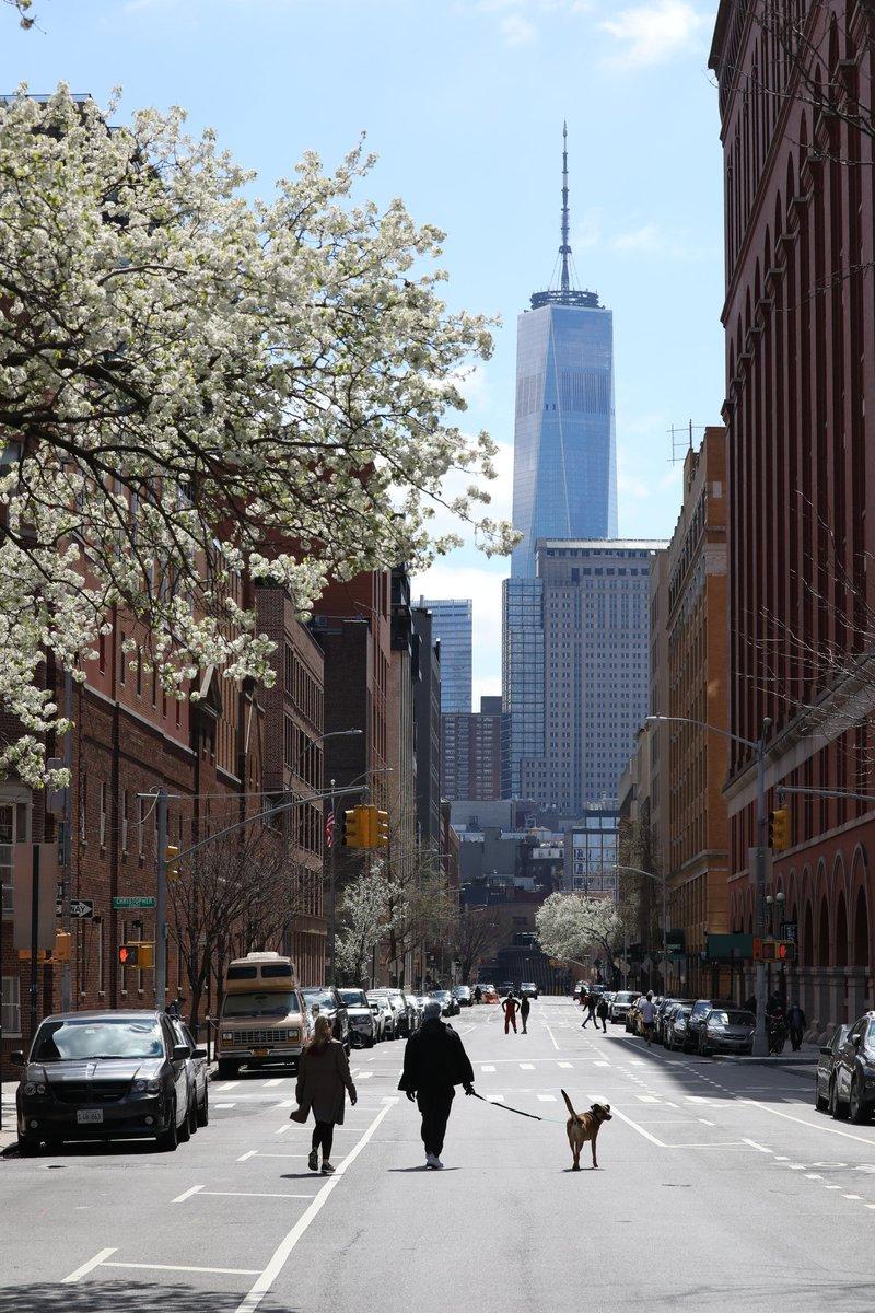 Saturday sunshine down Greenwich Street #NYC pic.twitter.com/Q8Minemize