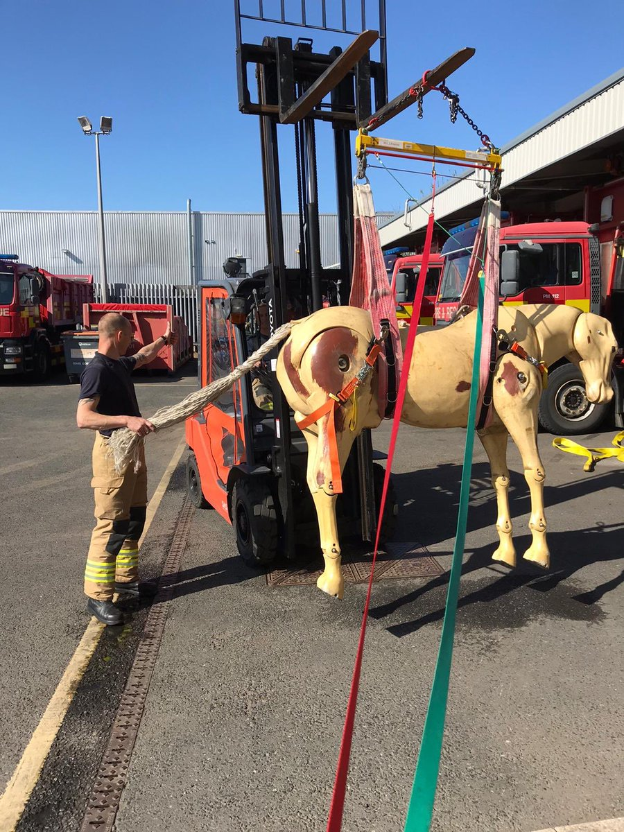 Some animal rescue training this afternoon using specific lifting strops for equine.. #development #Training