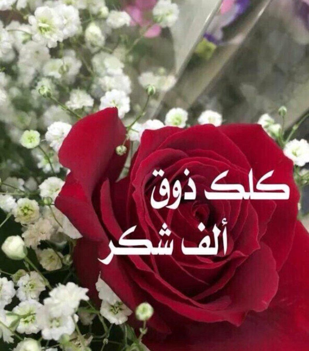 Etiqueta يسلمو En Twitter