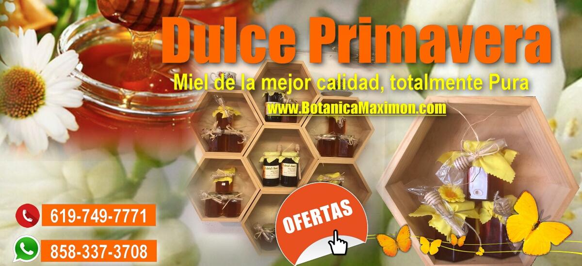 En primavera endulza tu vida con la miel de abeja 100% pura y natural.  Para pedido online haz click aquí https://t.co/GJWxB4hVt8  Su pedido se lo enviamos mediante UPS ☎: (619) 749-7771  #botanica #maximon #elcajon #california #hierbas #flores #religiosos  #hiundistas https://t.co/ZnV83hRwtj