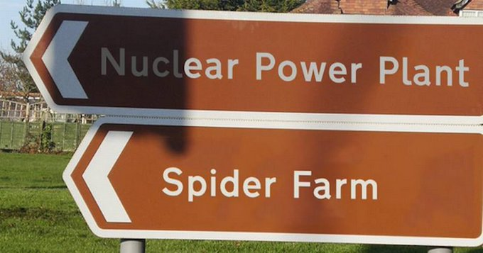 Nuclear Plant/Spider Farm