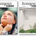 Image for the Tweet beginning: Need some reading? @Resurgence_mag are