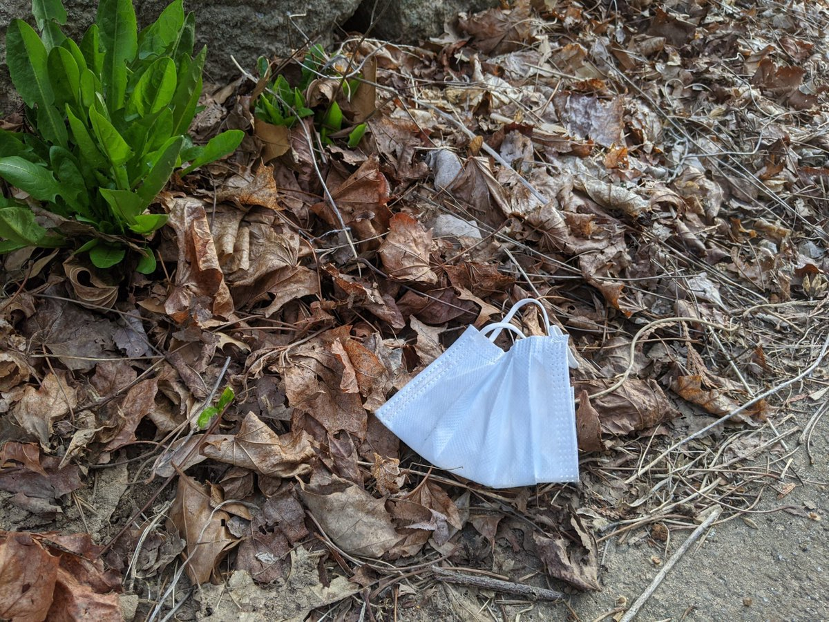 Don't trash our natural spaces! Help stop the spread of germs + protect our environment by disposing gloves, masks, wipes + other personal protective equipment properly. Throw these items used at home in a trash bag + tie the bag before placing it in a trash receptacle #Covid19