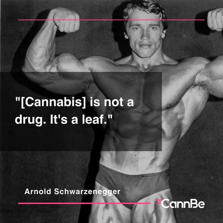 #CannabisCommunity #cannabisculture #Cannabis #FelizMartes #WeedLovers #weedsmokers #Schwarzenegger #StrongerTogether pic.twitter.com/lzz3w96hAb