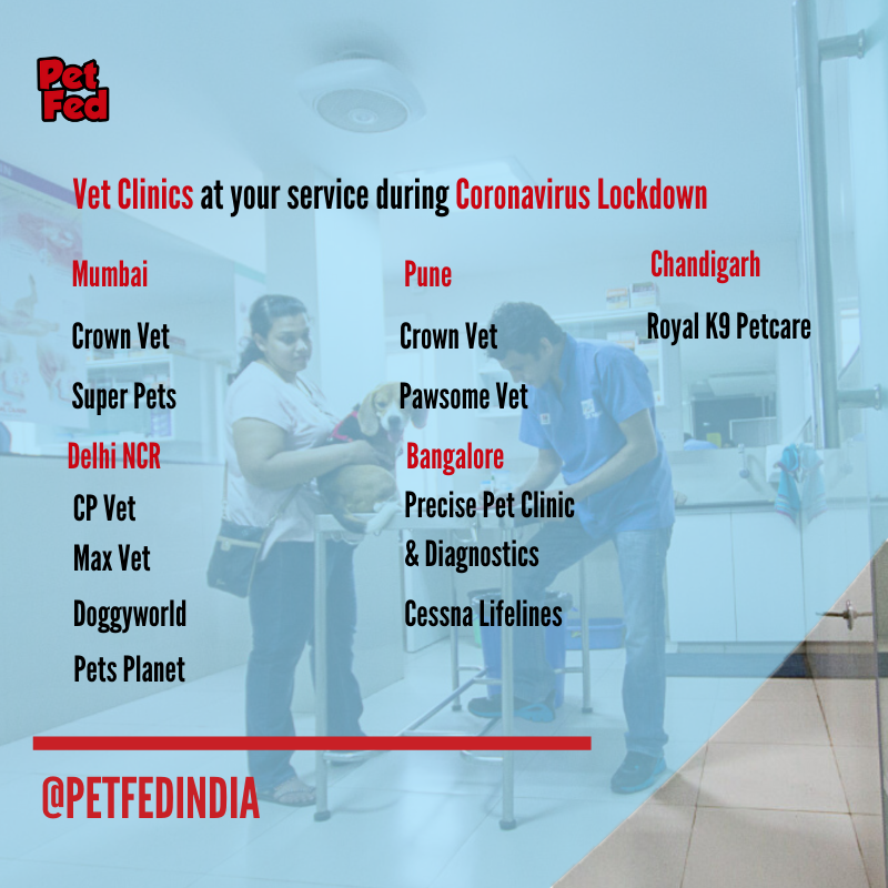 We're here to tell you which all vet clinics are still operational in this lockdown. We request people to go out only in the case of an emergency. Stay home. Stay safe. Check out the complete blog at https://petfed.org/blog/vet-clinics-at-your-service-during-coronavirus-lockdown …pic.twitter.com/n2qccyIGF7