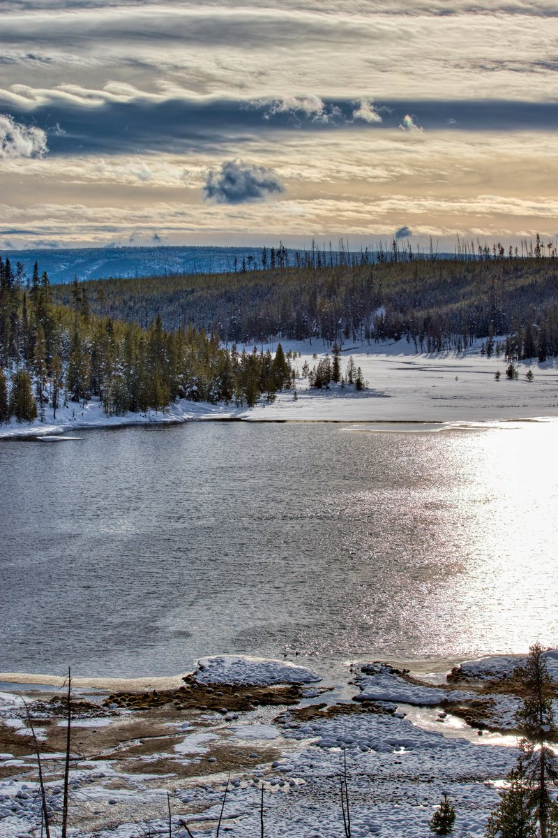 From two winters ago, Yellowstone is a magnificent place to go.  Wolves take over and bison are king.  It was wonderful.  #Yellowstone #winter @LiveFunTravel1