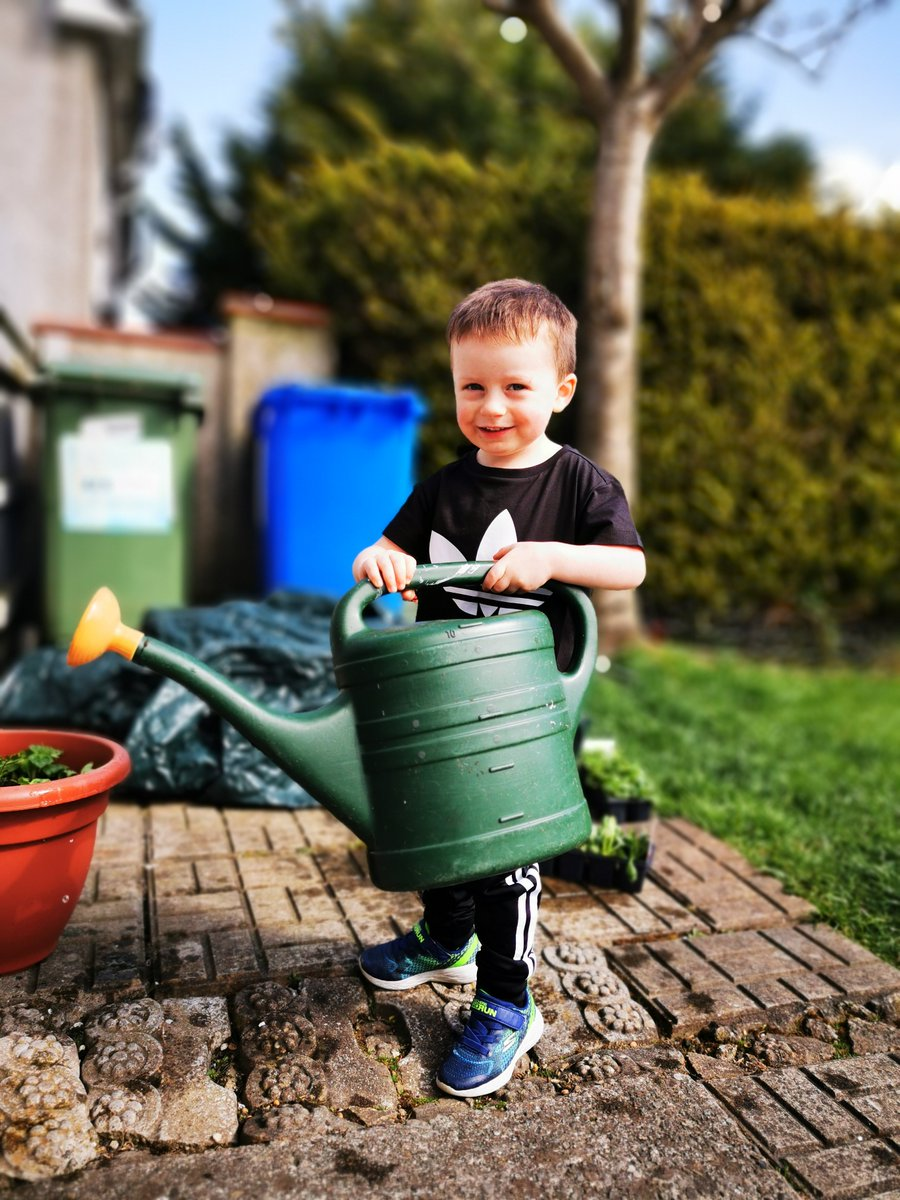 Nephew watering the plants during quarentine   #photooftheday #HuaweiP30Propic.twitter.com/cXhuuxk9E9