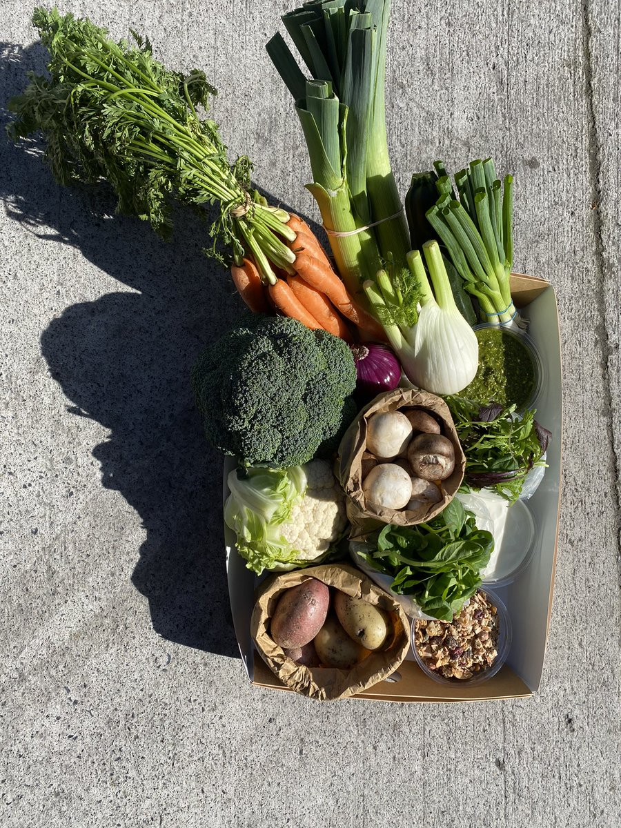 We're launching an organic vegetable box made up with produce and products from our farm, our kitchen & farmer friends this coming Friday and we would love your help. Please retweet . #SupportOurFarm   https://t.co/4pcJCFOuMR https://t.co/t7XZ6amG5k