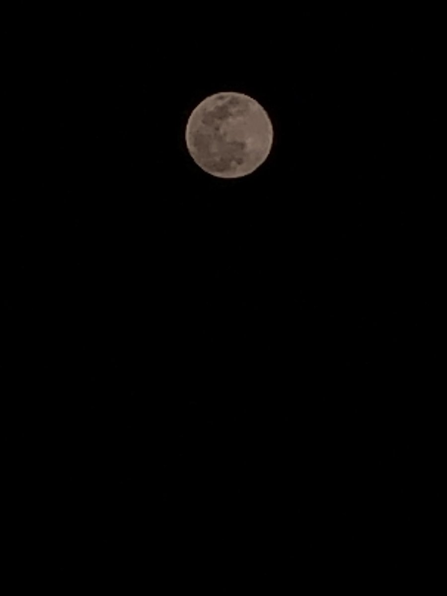 It can. If you use this right app. iphonex shot. Moon, a day before holi. Used Moment camera app. pic.twitter.com/nuGkmpxVEn