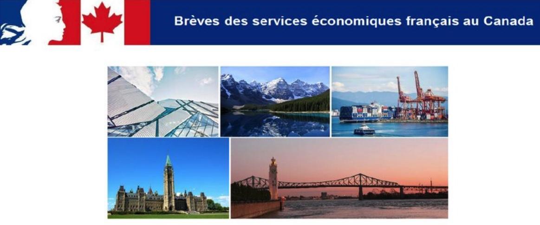 Retrouvez la dernière édition des brèves des services économiques français au #Canada 🇫🇷- 🇨🇦  #economie #aeronautique #energie #industrie #numérique #transport ... 👉https://bit.ly/2xYhHKS