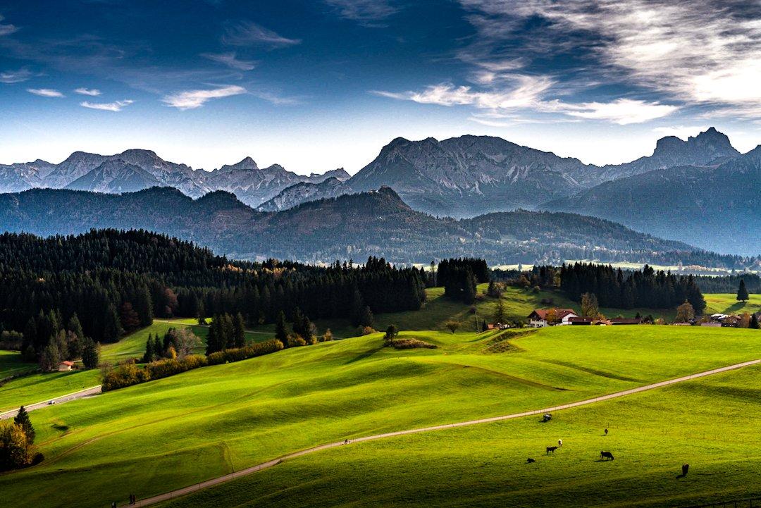 Hört ihr auch die -Glocken läuten?  Diese hügeligen grünen Wiesen mit den Bergen  sind für mich 100%-typisch Allgäu.  #covid19 #coronavirus #landschaftsfotografie #allgäu  Mehr Landschaftsfotos mit positiven Vibes gibt es auf meinem IG Kanal: https://www.instagram.com/p/B-sOtn0ozPY/?igshid=1ovcjmwbko5n1…pic.twitter.com/q9YoTaUpPv