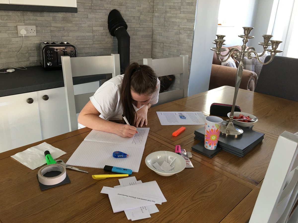 Look at this dedication from a wonderful Y11 student working hard on her cells revision.... Keep at it. #proud #resilience #dedication @BurtonBorough @Hawkstone_BBS https://t.co/tjlXl5ZQrl