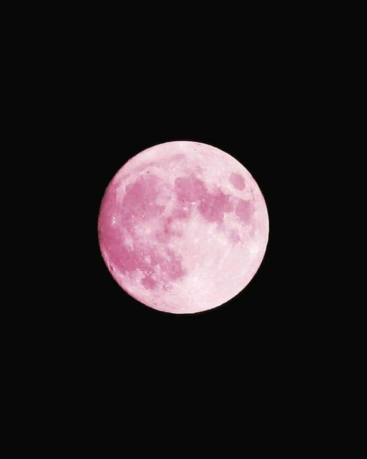 the super pink moon and her goth gf the super blood wolf moon