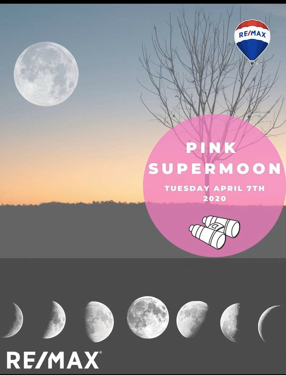 Tonight's the night! A moon just for me! #PinkMoon 10:35pm eastern who's going to check out the 🌝 with me? #PinkSupermoon #pinkpower #pink #thinkpink #pinkyknowsnaples