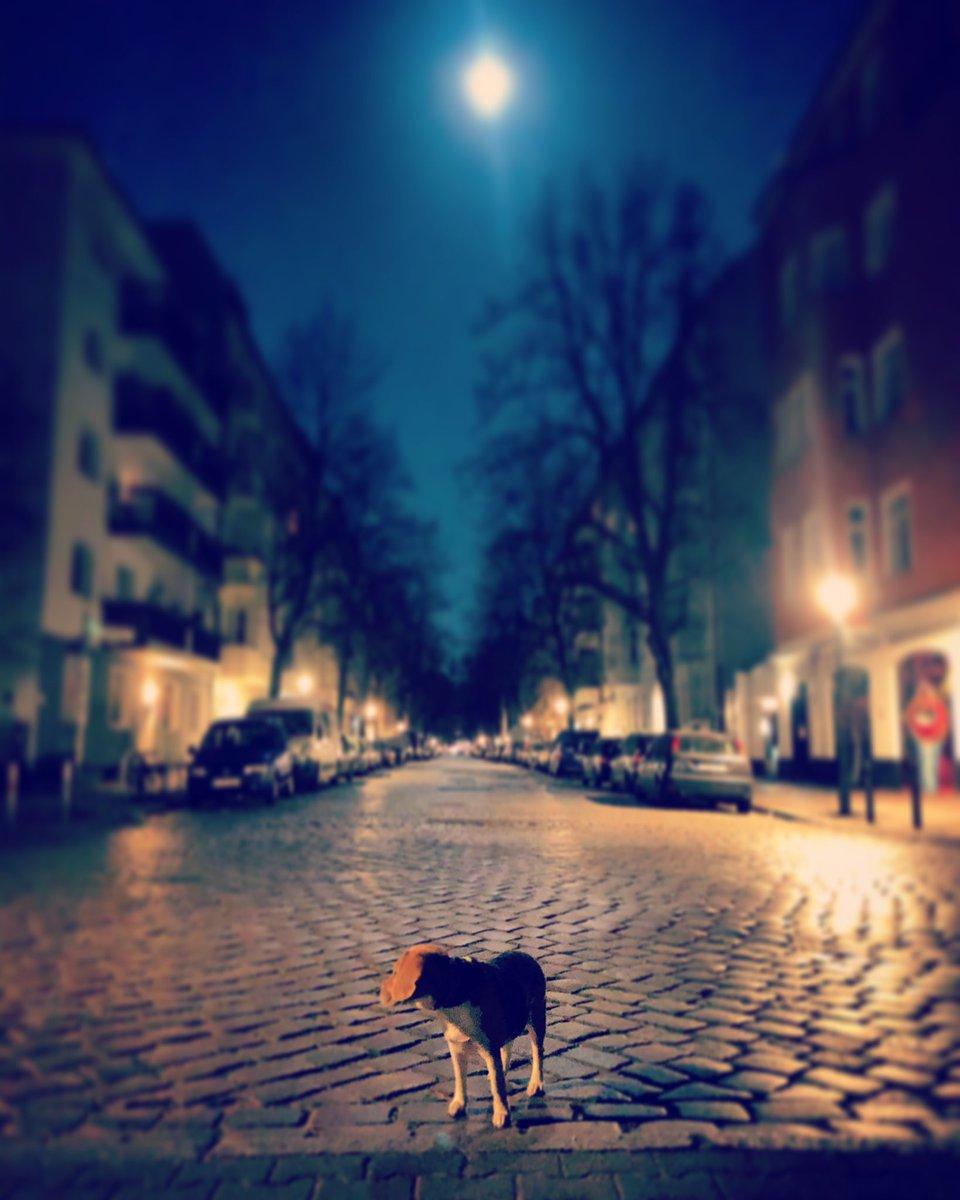 #Berlin corona streets under a super moon pic.twitter.com/QUoi3FWyNY