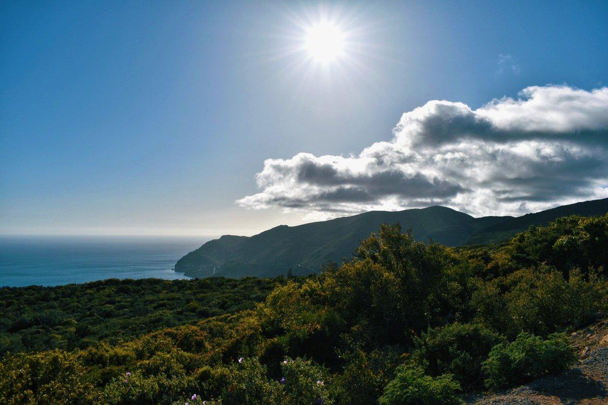 Serra da Arrábida, Setúbal . . . #LandscapeLovers #BeautifulLandscape #Viewpoint #NakedPlanet #LandscapeHunter #Aperature #LongExposure #ManualFocus #LightPhotography #VSCO #VSCOcam #LeadingLines #Symmetry #Viewpoint #Panorama #DepthOfField #DodgeAndBurn #ThroughTheLens