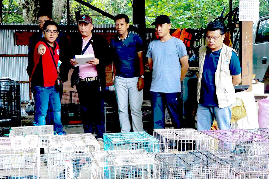 READ: Cimatu: Monitoring of illegal wildlife activities continues amid COVID-19 pandemic ---> https://bit.ly/39VPods